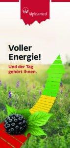 thumbnail of Publikumsbroschuere_energie