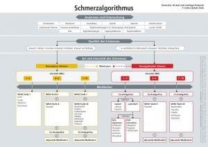 thumbnail of schmerzalgorithmus